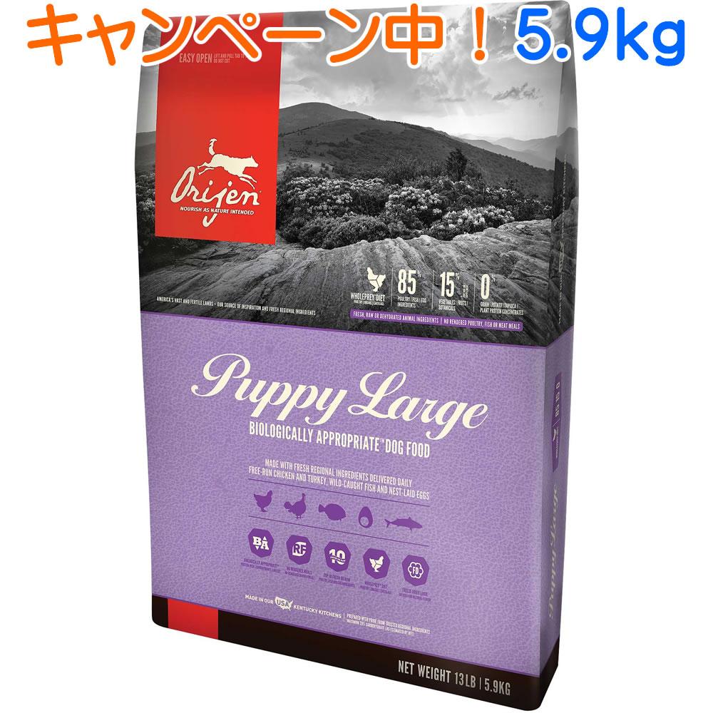 オリジンパピーラージ 5.9kg 【ランクアップキャンペーン特別価格!(4/26まで)】