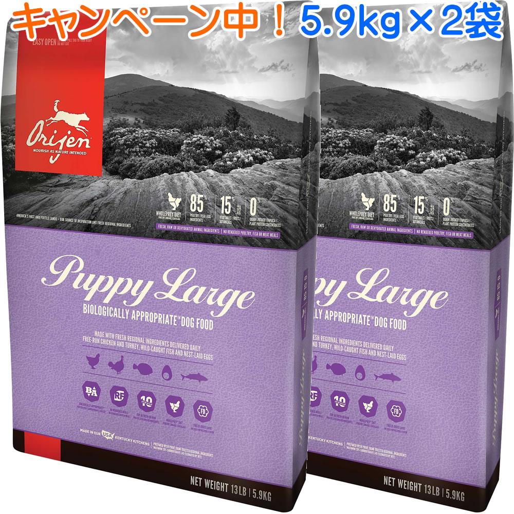 オリジンパピーラージ 5.9kg×2袋 【ランクアップキャンペーン特別価格!(4/26まで)】