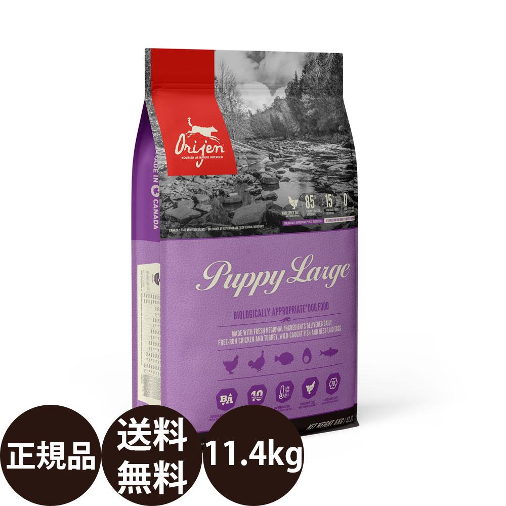 オリジンパピーラージ 11.3kg