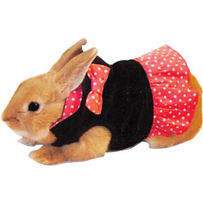 レインボー rabbit ミニ リボンパーカー L
