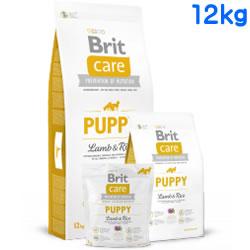 Britケア ラム&ライス パピー 12kg 【 BritCare / ブリットケア 】
