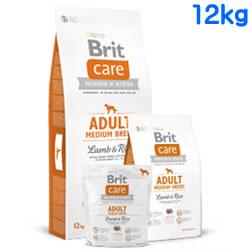 Britケア ラム&ライス アダルト M 12kg 【 BritCare / ブリットケア 】