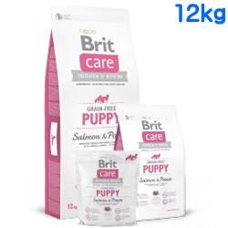 Britケア グレインフリー サーモン&ポテト パピー 12kg 【 BritCare / ブリットケア 】