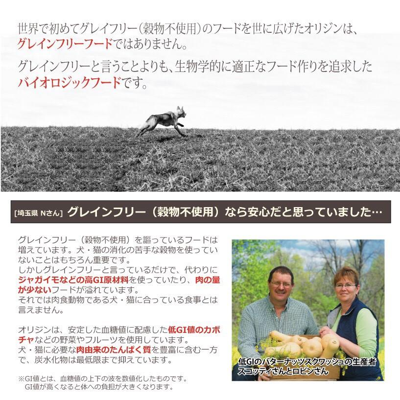 【トレインキャンペーン~7月末まで】オリジン オリジナル(旧オリジン アダルト) 11.3kg
