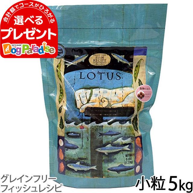 ロータス グレインフリー フィッシュレシピ 小粒 5kg(お取り寄せ)