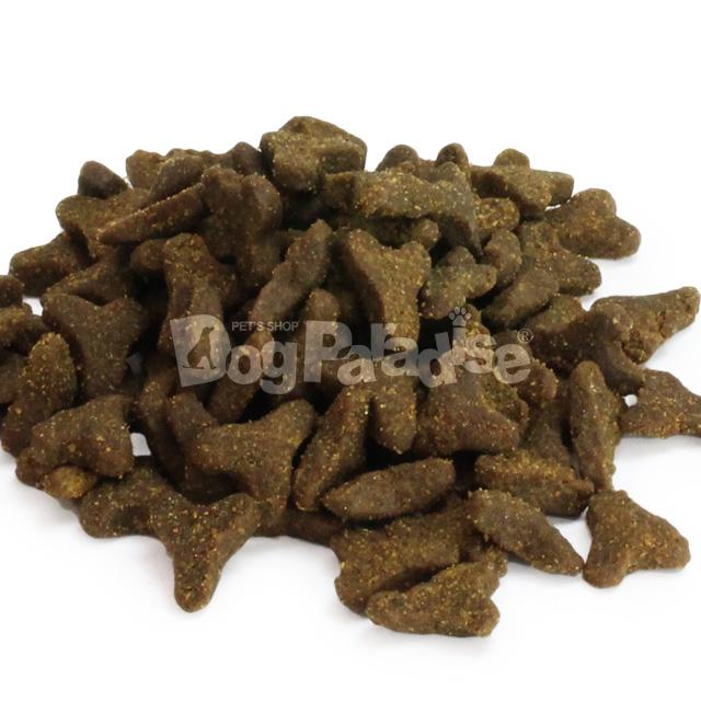 ファーストメイト キャット パシフィックオーシャンフィッシュ ウィズ ブルーベリー 1kg(グレインフリー ドライ ごはん キャット 猫用品 ペット ご飯 フード ペットフード 肥満 猫 ドライ 穀物不使用)