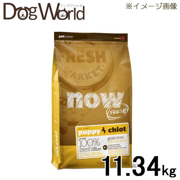 NOW FRESH グレインフリー パピー 11.34kg 【ドッグフード】