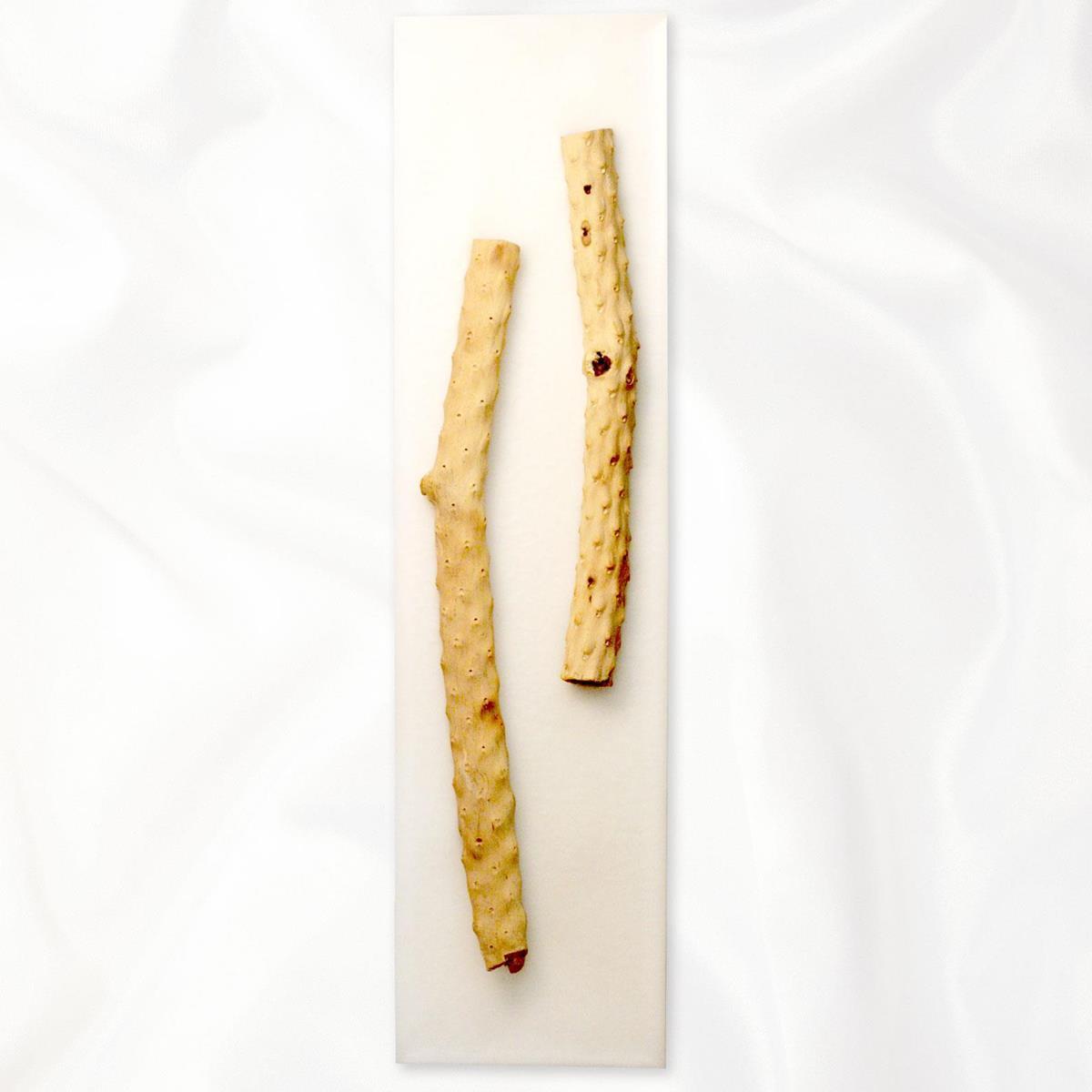 【アウトレット】イタリア・トリノ発 ルマーニ工房のワックスアート ドリフトウッド〔L〕