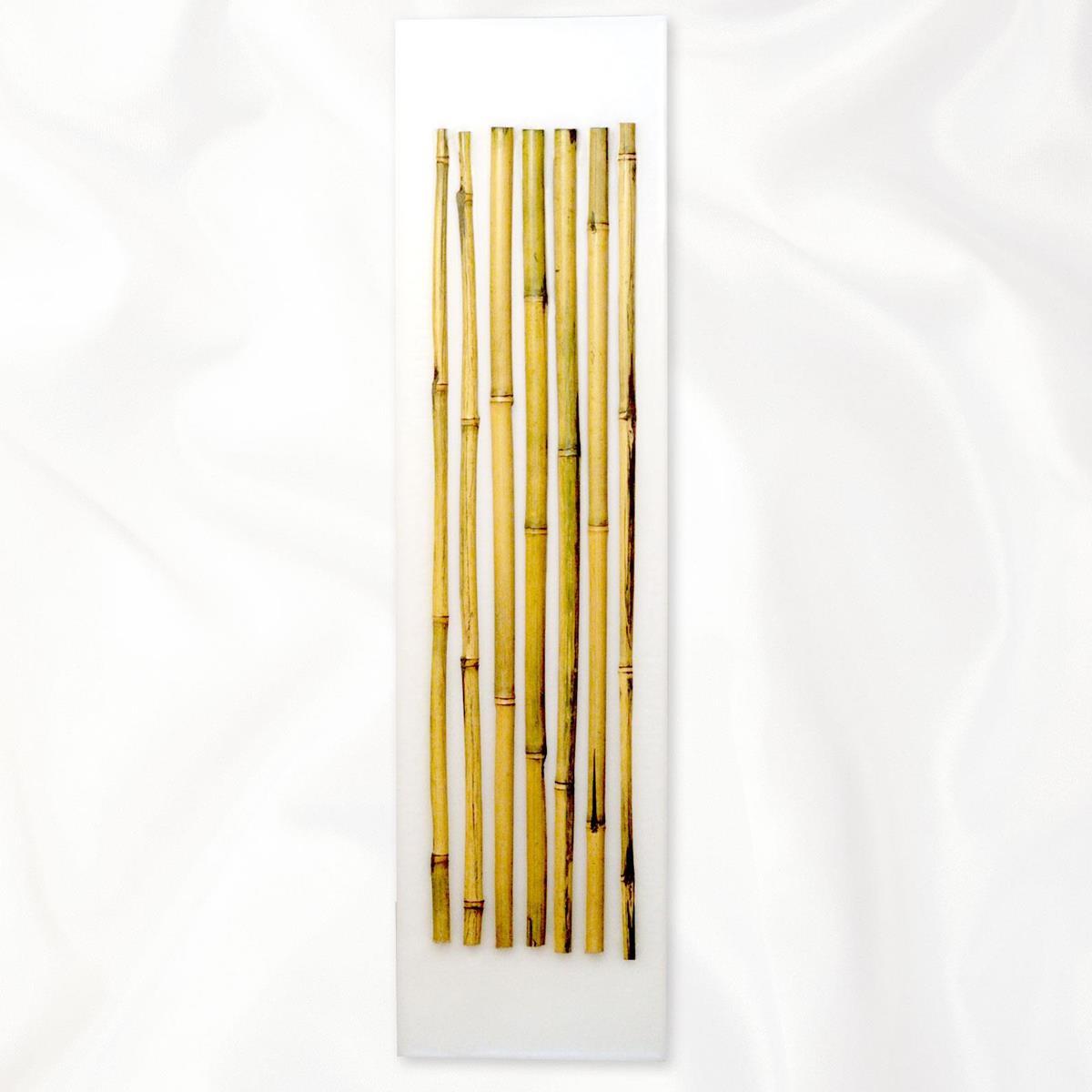 ?SALE?【アウトレット】イタリア・トリノ発 ルマーニ工房のワックスアート グリーンバンブー〔L〕