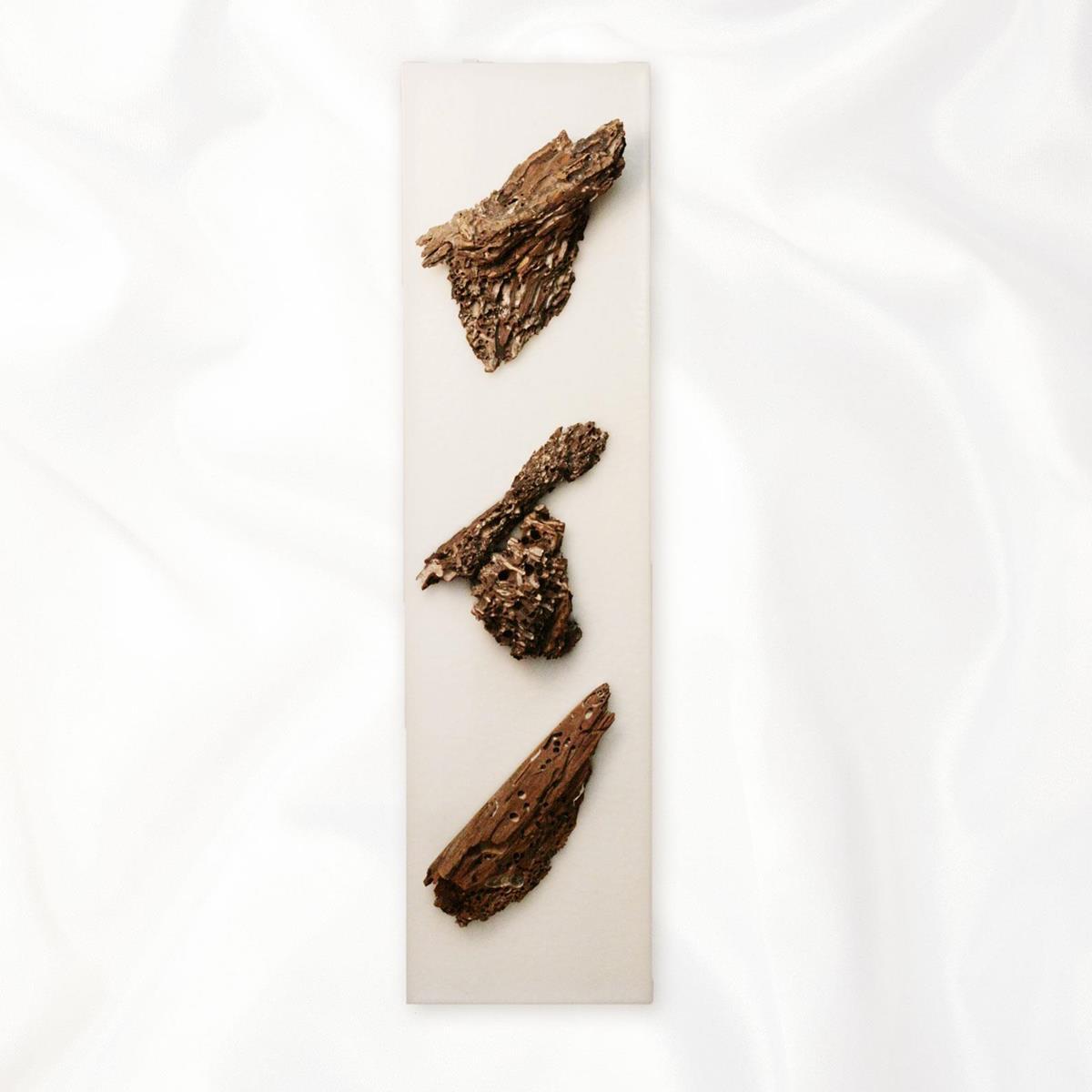 ?SALE?【アウトレット】イタリア・トリノ発 ルマーニ工房のワックスアート 流木 〔L〕