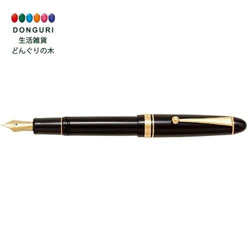 【150円クーポン】 PILOT パイロット 万年筆 カスタム742 極細字 EF 黒軸 FKK2000RBEF