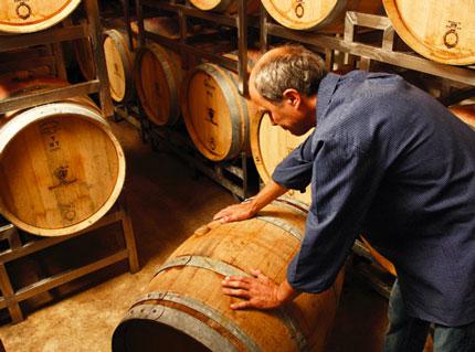 Trocken Spaetburgunder Rotwein Q. b. A. Q. b. A. grape lotwin supertburgnder Vass may [2008] (Martin vaismear) [2008] (Martin Wassmer)