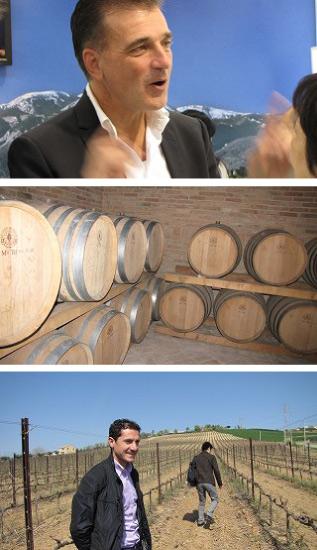 Casale Vecchio Montepulciano d'Abruzzo [2012] (Farnese) Casale Vecchio Montepulciano d ' Abruzzo [2012] (Farnese)