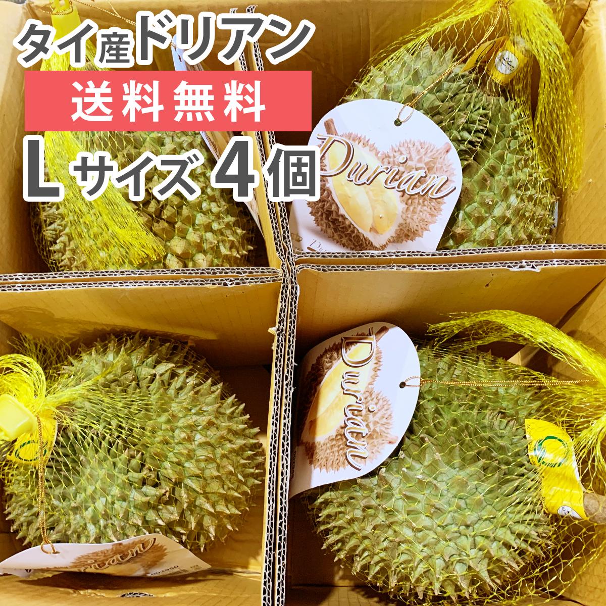 ドリアン モントーン種 タイ産 Lサイズ 4玉 生鮮 フレッシュ 生 果物