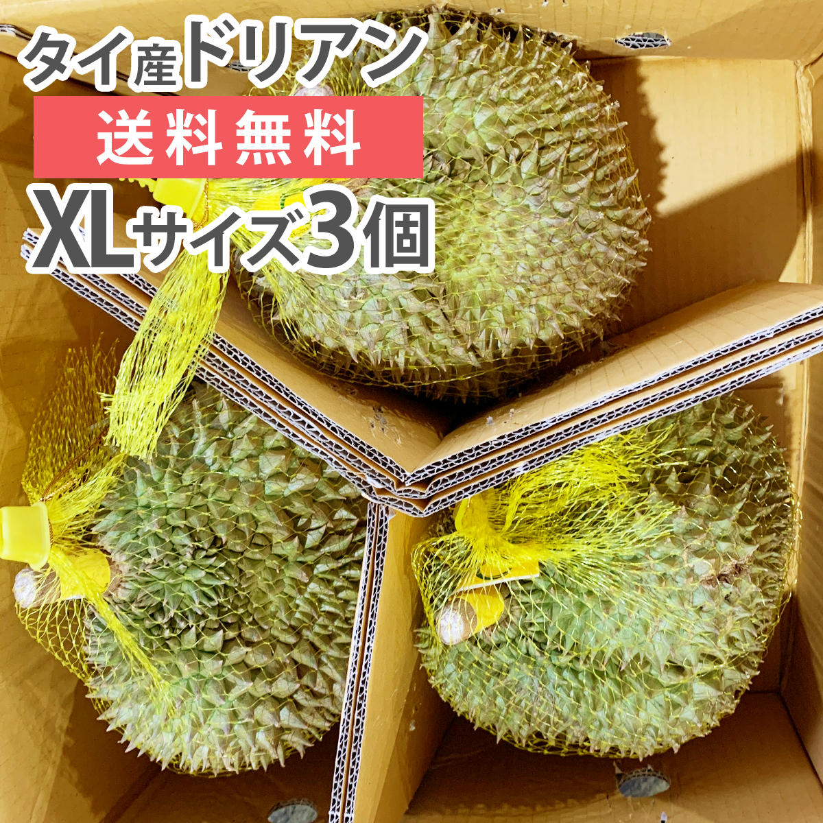 ドリアン モントーン種 タイ産 XLサイズ 3玉 生鮮 フレッシュ 生 果物