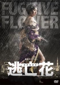 【新品】【DVD】逃亡花 DVD-BOX 蒼井そら