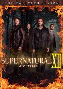 【新品】【DVD】SUPERNATURAL IXII スーパーナチュラル <トゥエルブ・シーズン> コンプリート・ボックス ジャレッド・パダレッキ
