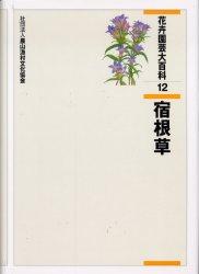 花卉園芸大百科 12 宿根草 農文協/編