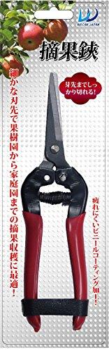 【SALE】 【新品】 摘果鋏, コンタクトレンズ通販 レンズデリ 57a9e504
