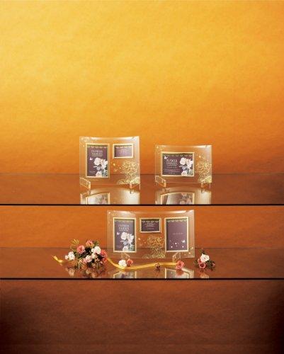 【新品】 ユ-パワ- Flower Fairies フラワーフェアリ-ズ ガラスフォトフレーム 2ウィンドー FF-02021