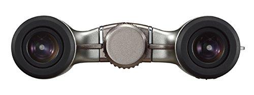 【新品】 Nikon 双眼鏡 アキュロンT51 10x24 ダハプリズム式 10倍24口径 シルバー ACT5110X24SL