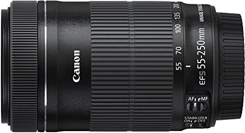 【新品】 Canon 望遠ズームレンズ EF-S55-250mm F4-5.6 IS STM APS-C対応 EF-S55-250ISSTM 白箱