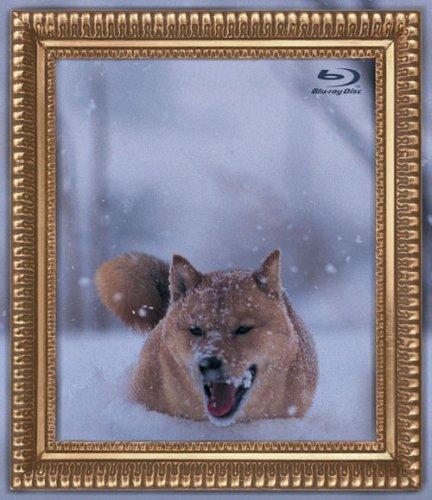 【新品】 レオナルド犬プリオ [Blu-ray]