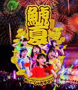 【新品】 チームしゃちほこサマーフェスティバル2013~略して