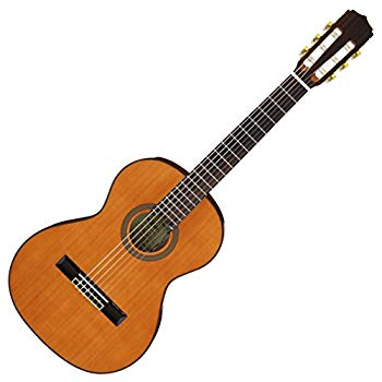 【中古】ARIA アリア ミニクラシックギター ソフトケース付 A-20-58