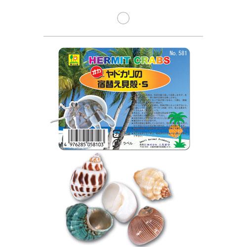 ¥5,000以上送料無料  三晃商会 ヤドカリの 宿替え貝がらS ペット用品 ヤドカリ 貝殻 オブジェ