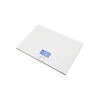 桜井 スターパックトレス ハイトレス75 高透明高級紙 75g/m2 A1Y 100枚(ハントウメイ)