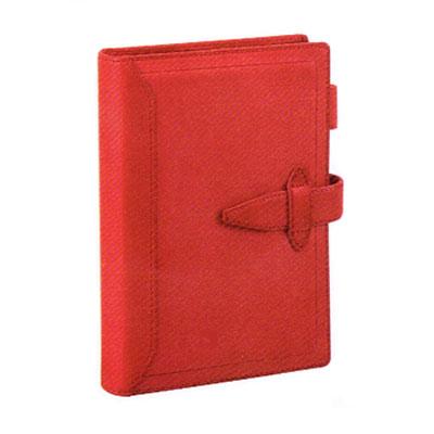 レイメイ藤井 ダ・ヴィンチグランデ 聖書 システム手帳 DB3014R(レッド)