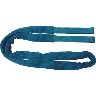 田村 ラウンドスリング SSタイプ 両端アイ形 青色 使用荷重1.6t 長さ9.5m