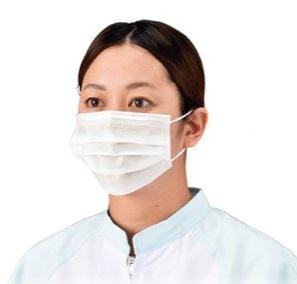 エブノ マスク No.858 フリーサイズ ホワイト 5000枚入(100枚×50箱) プリートマスク50 2PLY 耳掛