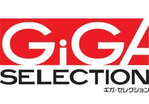 ギガ・セレクション オイルスキマ GSO-2FX4