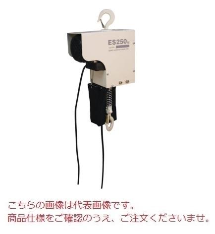 スリーエッチ H.H.H. 電気チェーンブロック ES250kg×6m (ES250X6)