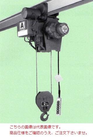 【直送品】 日立 普通形ホイスト Aシリーズ 2t/揚程 6m (2AM-AT75) (電動トロリ付)