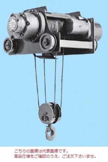【直送品】 日立 ダブルレール形ホイスト Vシリーズ 3t/揚程 6m (3D-T55) (電動トロリ付)