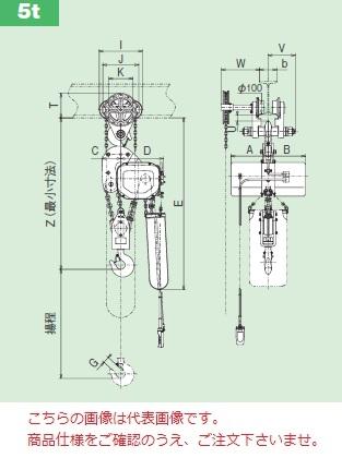 【直送品】 日立 モートルブロック Fシリーズ 5t/揚程 6m 鎖動トロリ付 (5FNH-5BCH-2PBNH) 《二重速形》