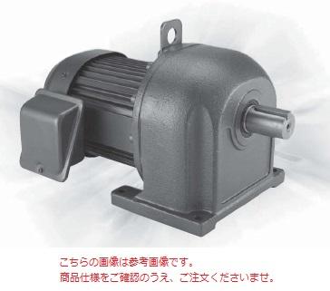 三菱 (MITSUBISHI) ギヤードモータ GM-DPF 0.75KW 1/200 200V (GM-DPF-750W-1-200)