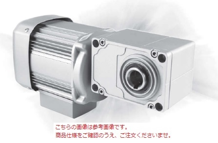 三菱 (MITSUBISHI) ギヤードモータ GM-SSYPF-RH 0.75KW 1/10 200V (GM-SSYPF-RH-750W-1-10)