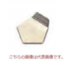 オーハウス (OHAUS) F1級 OIML標準分銅 91400133 (JCSS校正証明書付)