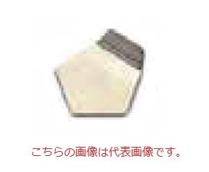 オーハウス (OHAUS) F2級 OIML標準分銅 91400161 (JCSS校正証明書付)