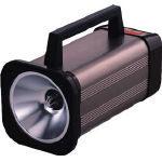 日本電産シンポ (SHIMPO) (SHIMPO) デジタルストロボスコープ DT-315N DT-315N, datta.やちむんとシーサーの工房:cccaa63f --- sohotorquay.co.uk