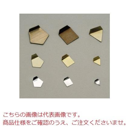 【直送品】 【分銅】 OIML型板状分銅(小質量:アルミ) E2PSO-1M E2級分銅(JCSS校正付)