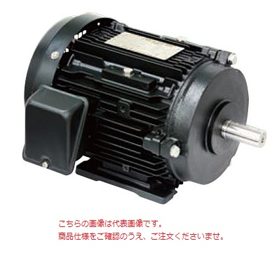 【代引不可】 東芝 (TOSHIBA) プレミアムゴールドモートル TKKH3 FCKLW21E 4P 22KW 400V (fcklw21e4p22kv4) 《フランジ・屋外》 【メーカー直送品】