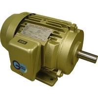 【代引不可】 東芝 (TOSHIBA) ゴールドモートル(新JIS高効率規格対応) FBK8G 4P 5.5KW GOLD 400V 【メーカー直送品】