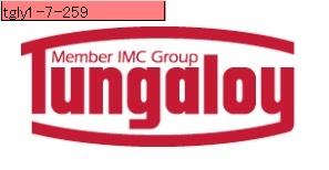 タンガロイ チップ (10個) TNMG220404-TM T9115 (TNMG220404TMT9115) 《TACインサート》