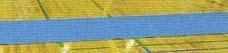 【送料無料】【サンラッキー SUNLUCKY】【スポーツ輪投げ クロリティー】ニュースポーツ クロリティーレーン  QL-3 QL3