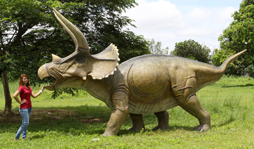 全長6.2m!トリケラトプス 超巨大フィギュアC(恐竜等身大フィギュア)